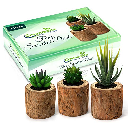 Fake Succulent & Feaux Cactus Plants - Set of 3 | Artificial Plastic Decor in Small Wooden Planter Pot | Real Live Looking Mini Faux Plant for Home, Desk, Office, Bedroom, Kitchen, Bathroom, Bookshelf - Planter Make Box Wooden