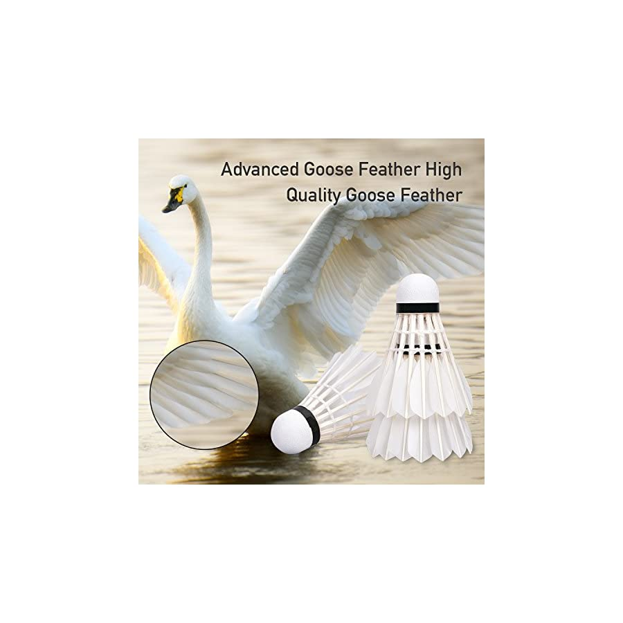 Ancees Advanced Goose Feather Shuttlecocks, Badminton Shuttlecocks for Training Sport Feather Shuttlecocks Badminton Birdies with Great Stability and Durability (12PCS)
