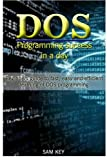 DOS Programming Success in a Day: Beginners guide to fast, easy and efficient learning of DOS programming