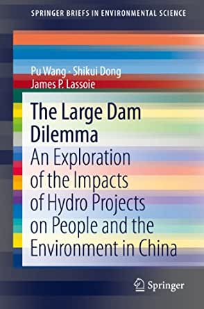 an overview of the environmental impacts of large dams Cleaning up the big muddy: a meta- synthesis of the research on the social  impact of dams environmental impact assessment review available at.