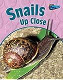 Snails Up Close (Minibeasts Up Close)