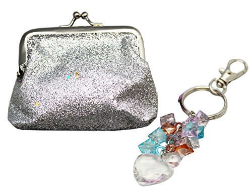 Glittery Silver Colored Coin Purse and Keyring Set