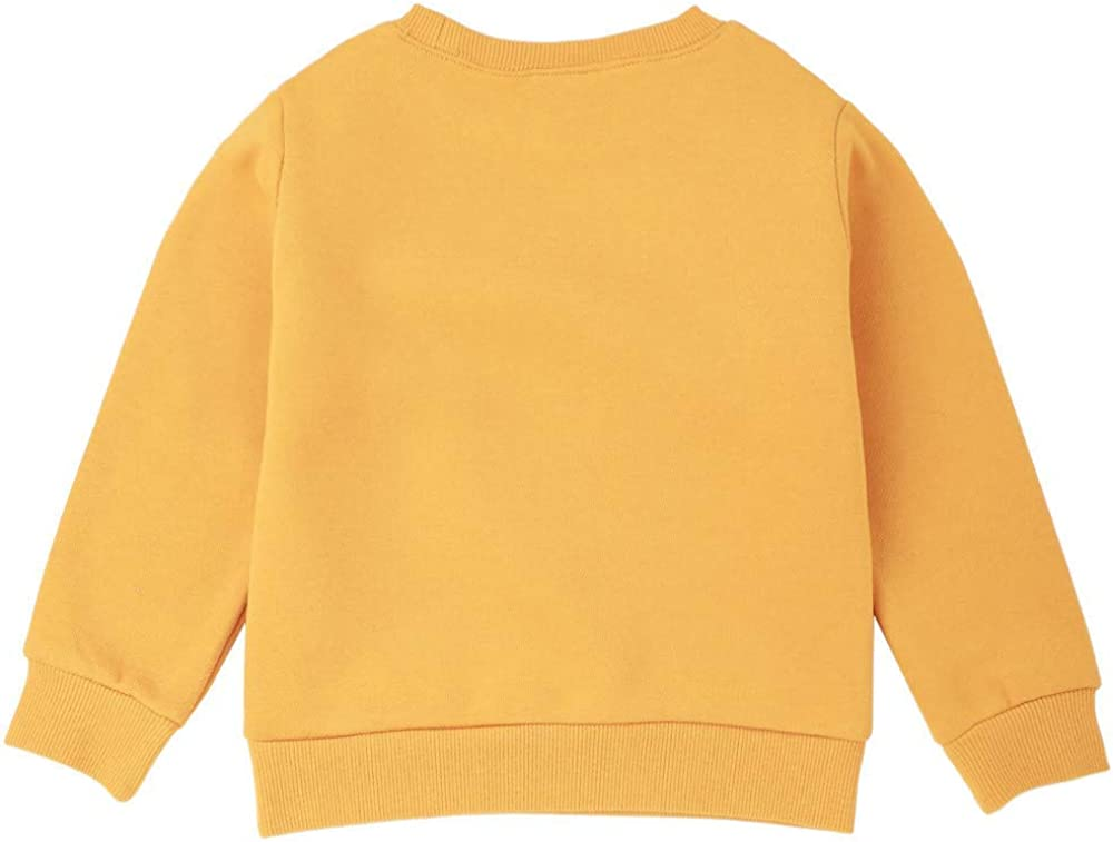 Baby Toddler Boys Girls Sweatshirt Pullover Tops Fall Clothes Kids
