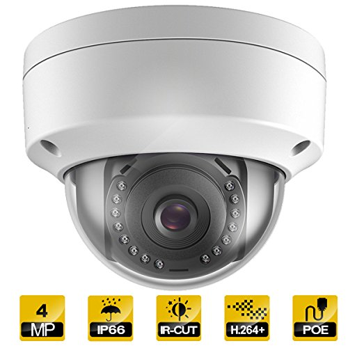 Hykamic Outdoor 4 Megapixels PoE Dome IP