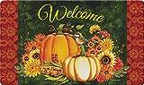 Toland Home Garden Welcome Gourds 18 x 30 Inch Decorative Fall Floor Mat Autumn Harvest Doormat