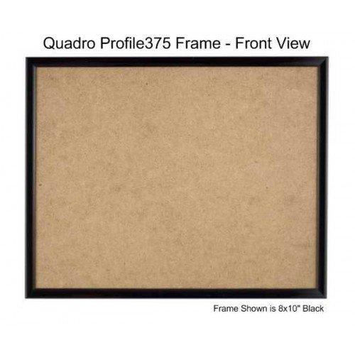 10 x 16 frame - 9