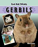Gerbils (Our Best Friends)