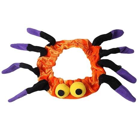 POPETPOP Gato de Disfraces de Halloween Collares en Forma de araña ...