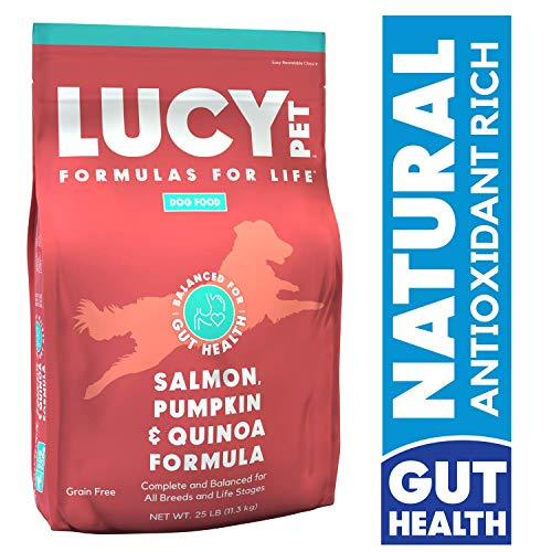 Lucy Pet Formulas for Life – Sensitive Stomach & Skin Dry Dog Food, All Breeds & Life Stages – Salmon, Pumpkin, & Quinoa