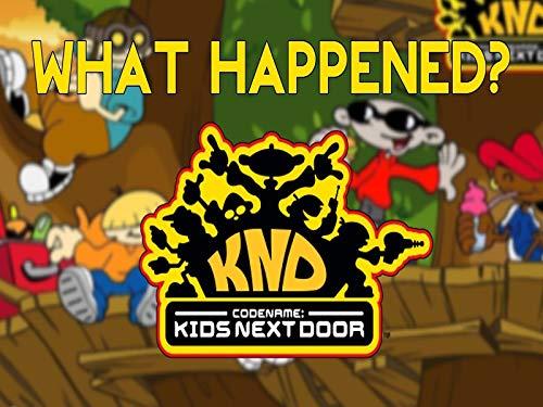 What Happened To Codename Kids Next Door