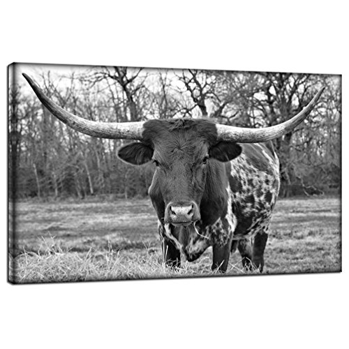 LevvArts Black and White Animal Wall Art Longhorn Picture Prints Modern Office Living Room Wall Decor Stretched and Framed Animal Giclee Print Art Ready to Hang
