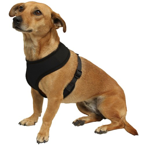 OxGord Pet Control Harness for Dog and Cat Easy Soft Walking Collar – Vehicle Safety Strap Vest – Small Black, My Pet Supplies