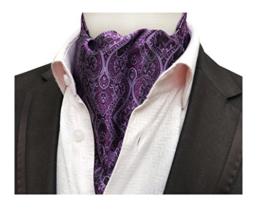 unning Cravat Woven Ascot Hanky Handkerchief Formal Neckties ()