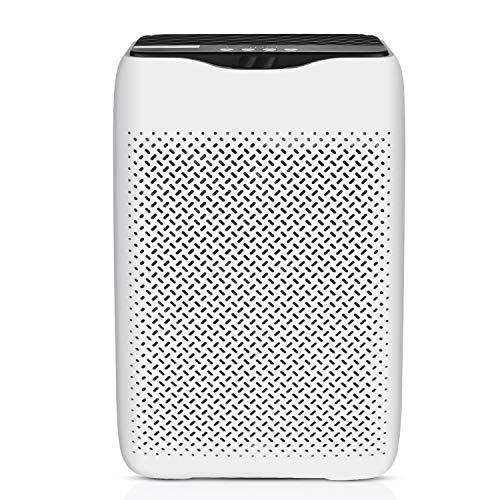 couply Air Purifier with True HEPA Filter, Air Cleaner for Home Allergiers and Pets Hair, Smokers, Moldd, Pollen, Dust…