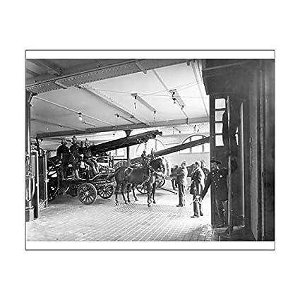 Impresión fotográfica de un caballo de bomberos en un applience cobertizo