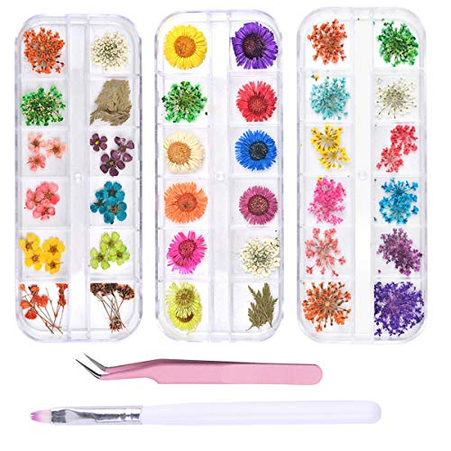 editTime 36 Colors Nail Dried Flowers 3D Nail Art Sticker, Flower Beauty Nail Stickers for Manicure, Natural Real Dry Flower Kit with a Curved Tweezers and a Nail Brush(4)