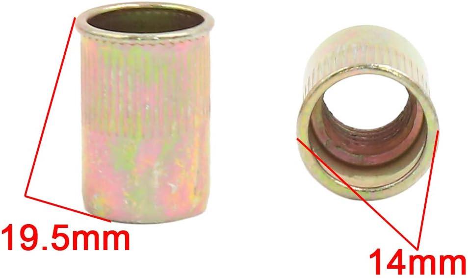 sourcing map 60pcs Rivet /écrou M10 Ton Bronze Acier Inoxydable /à Petite t/ête M/étal Filetage