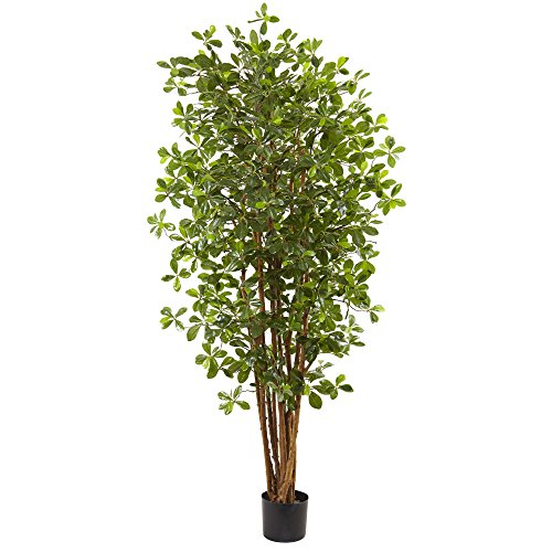 Nearly Natural Olive Silk Tree, 6', -