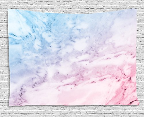 Ambesonne Marble Tapestry, Pastel Toned Cloudy Hazy Crack Lines Stained Antique Shabby Chic Design, Wall Hanging for Bedroom Living Room Dorm, 60 W X 40 L inches, Light Blue Baby Pink by Ambesonne