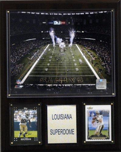 NFL Louisiana Superdome Stadium Plaque