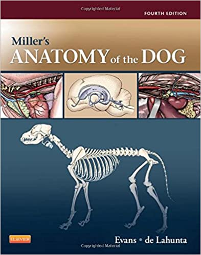 Miller\'s Anatomy of the Dog: 9781437708127: Medicine & Health ...