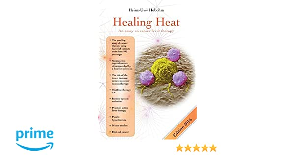 Healing Heat  An Essay On Cancer Fever Therapy Heinzuwe Hobohm  Healing Heat  An Essay On Cancer Fever Therapy Heinzuwe Hobohm   Amazoncom Books