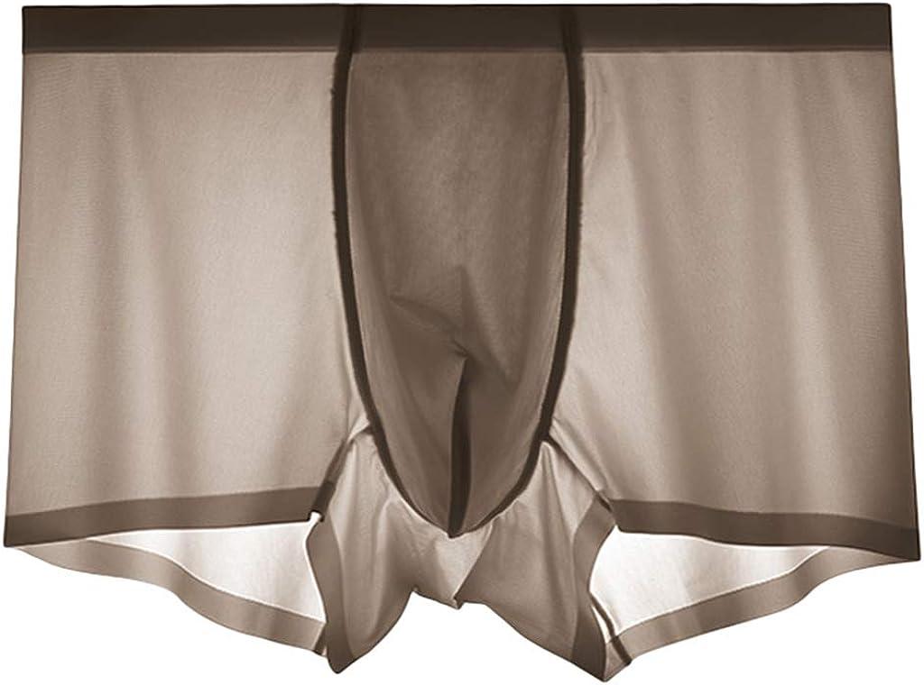 TIFENNY Breathable Ice Silk Underpants for Men Fashion Low Waist Underwear Silk Non-Slip Thin Pouch Underwear Panty