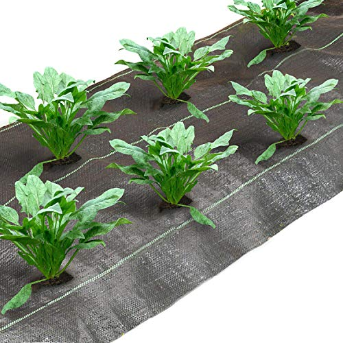 Agfabric Landscape Ground Cover 12x300ft Heavy PP Woven Weed Barrier for Spinach,Soil Erosion Prevention and UV stabilized, Plastic Mulch Weed Block