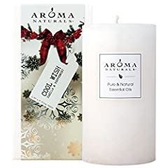 Peppermint revives and lifts the spirits while Vanilla is comforting and enticing. Enjoy a wintertime wonderland sitting in front of a warm fireplace with family and friends.Our artisan-style handcrafted candles were founded on the belief tha...