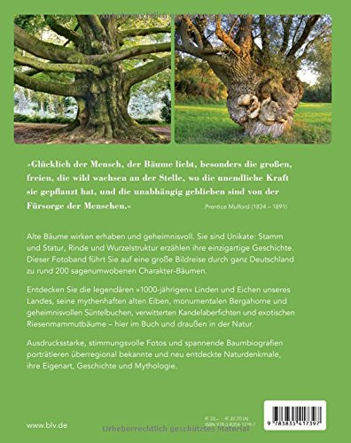 Charakter Baume Zwischen Kuste Alpen Erleben Amazon De Stefan