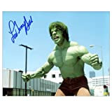 Lou Ferrigno Autographed 8x10 The Incredible Hulk Scene Photo