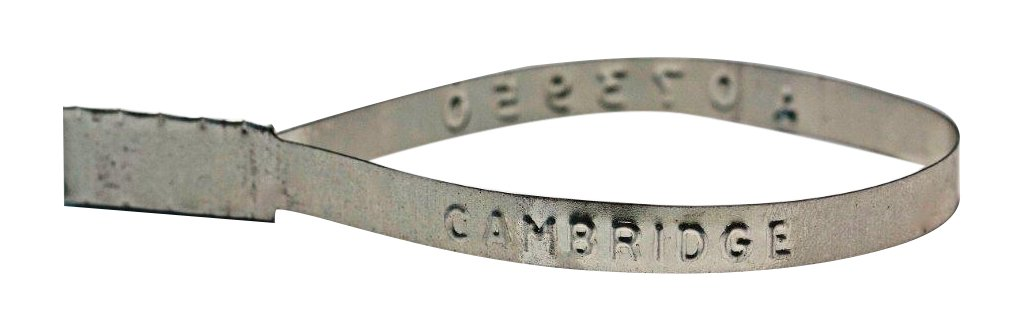 Cambridge Security Seals MFS00002 Metal Flat Style Seal, Steel (Pack of 1000)