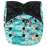 HappyEndings AI2 All-In-Two Cloth Diaper Cover / Snap-in Charcoal Bamboo Insert 'Animal World Map'