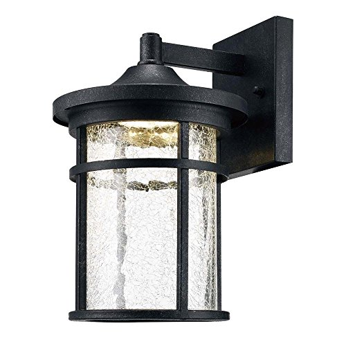 - Home Decorators Collection Aged Iron Outdoor LED Wall Lantern with Crackle Glass