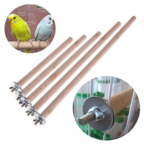 Parrot Stand Cage Bird 20 1 5 Cm Cm Pet Raw Branche Stand bois Toy suspendus Perches LUFA 4R4rAp
