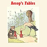 Bargain Audio Book - Aesop s Fables