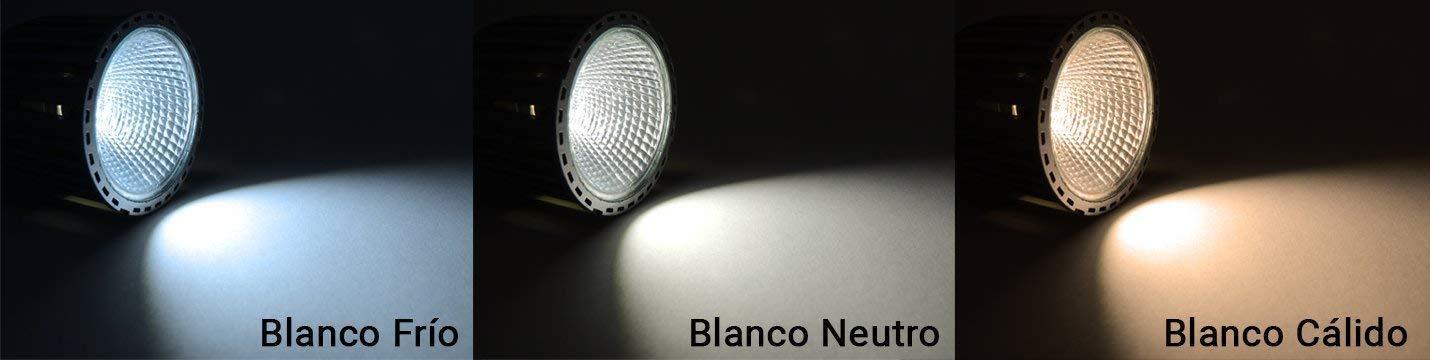 Foco de Carril LED Monof/ásico G8005 30W Negro Luz Calido 3000K