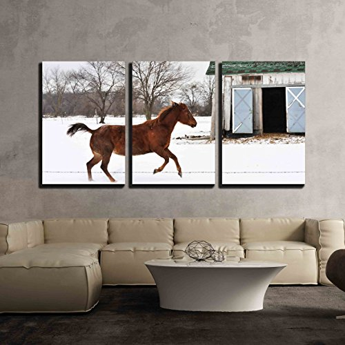 wall26 - 3 Piece Canvas Wall Art - Running Horse - Modern Home Decor Stretched and Framed Ready to Hang - 24