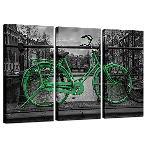 Biuteawal - 3 Panel Wall Art Green Bicycle Parked by Canal Scenery Painting on Canvas Black and White Amsterdam The Netherlands City Picture Print for Home Living Room Wall Decoration Ready to Hang