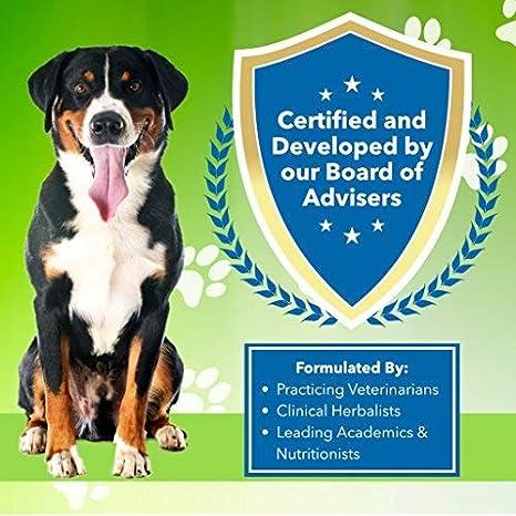 Amazon.com: Pet bienestar – Garganta de oro para perros – La ...
