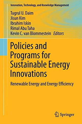 s for Sustainable Energy Innovations: Renewable Energy and Energy Efficiency (Innovation, Technology, and Knowledge Management) ()