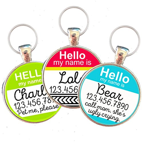 Hello My Name Is'' Silver Pet ID Tag by Sofa City Sweethearts