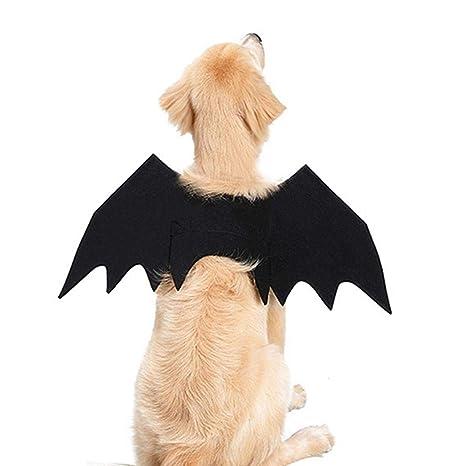 Onlyonehere Knowes Halloween Pet Bat Wings Ropa para Disfraces de ...