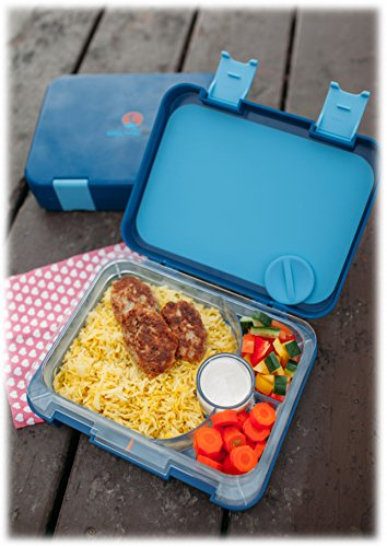 the best bento box for kids adults unique lunch box with 4 different compartments keeps food. Black Bedroom Furniture Sets. Home Design Ideas