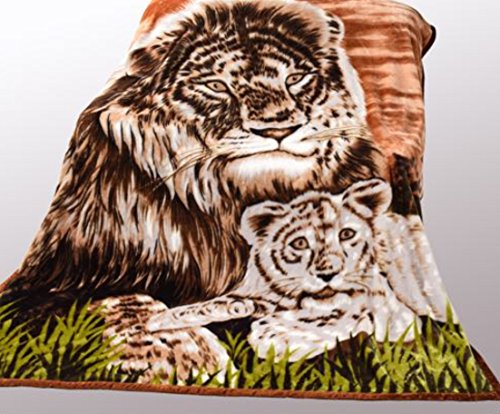 Wild Animal Lion Cub Print Blanket , Tv, Cabin, Couch,plush,warm, Bedcover Throw , Full Queen, 75