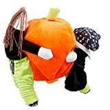 Hommii Halloween Funny Dog Clothes , Carrying Pumpkin Christmas Gift Fancy Jumpsuit Puppy Costume, with Cuddly Soft Plush Better to Keep Warm in Winter, for XS, S, M, L, XL Size Pet Dogs, Cats.