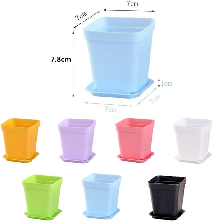 Yardwe Macetas de plástico cuadradas para Flores, 10 Unidades, con ...
