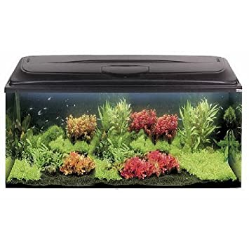 doméstica Acuario » aquael 20 « 200 L, color negro: Amazon.es: Productos para mascotas
