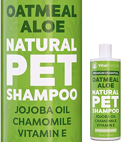 Shampoo for Dogs & Cats with Oatmeal, Aloe Vera, Chamomile, Jojoba Oil, Vitamin E - All Natural and Hypoallergenic, Helps Dry Coats & Itchy Sensitive Skin, No Parabens or Artificial Dyes, 16 oz