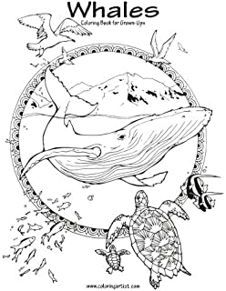 Whales Coloring Book For Grown Ups 1 Volume